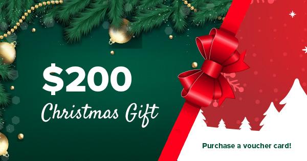 2019 Christmas gift
