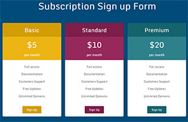 Pricing Plans and Subscription Payment Script