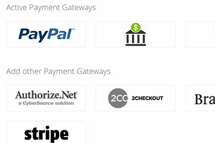 Online and offline payments