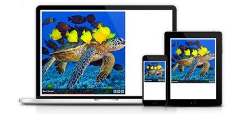 Unlimited and responsive galleries