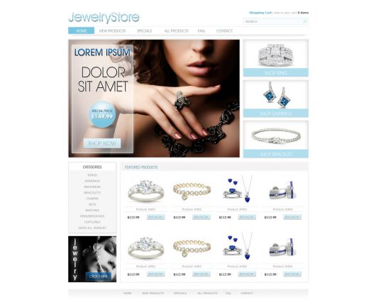 eCommerce Website Template 100