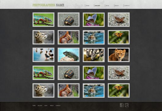 Photography Website Template 154