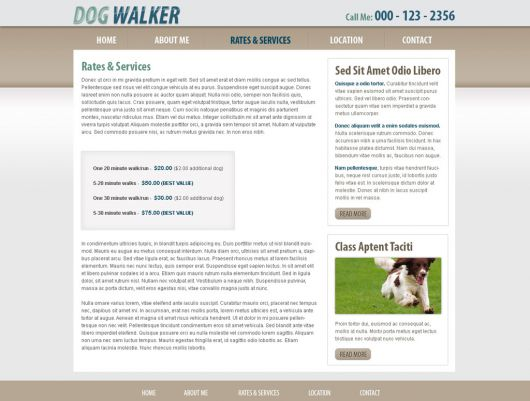 Dog Walking Website Template 45