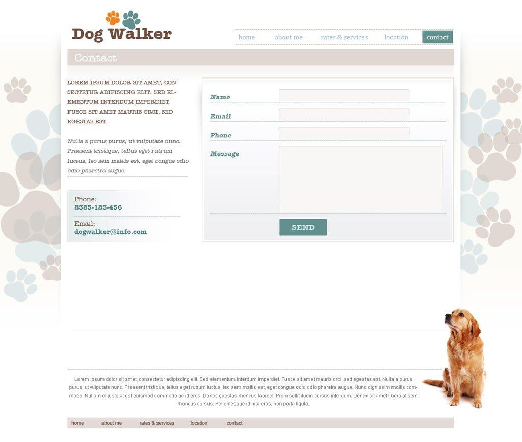 Dog Walking Licence Uk